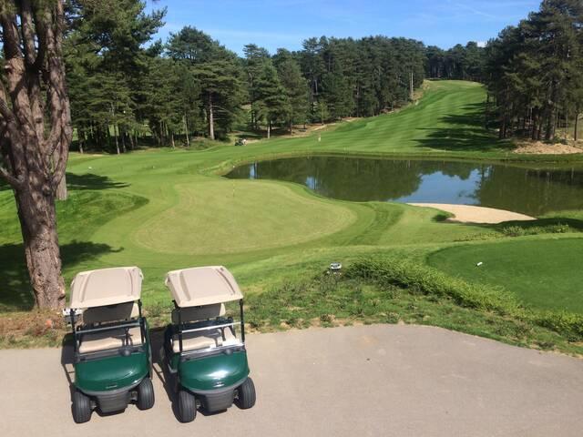 Voiturettes de golf à Hardelot
